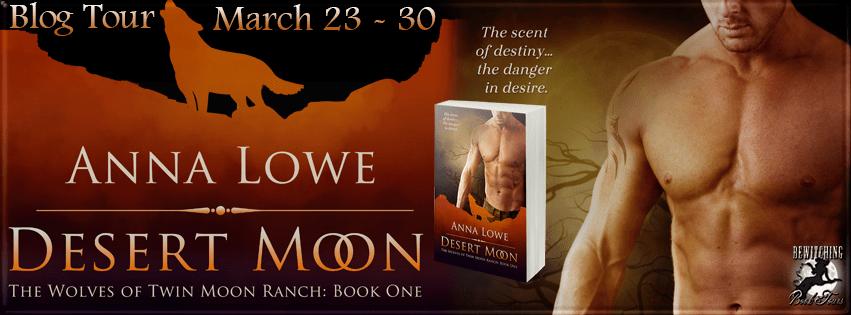 Desert Moon Banner 851 x 315