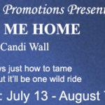 Review: Lead Me Home (Home is Where the Heat Is #2) by Candi Wall {Tour} ~ Excerpt/Giveaway