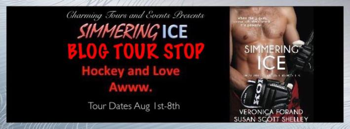 Simmering Ice Tour Banner