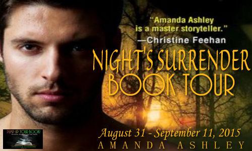 Night's Surrender Book Banner