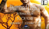 Diamond Legacy Book Banner
