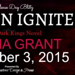 Release Day Blitz: Passion Ignites (Dark Kings #7) by Donna Grant ~ Excerpt