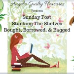 Sunday Post/BB&B #119 ~ Car Troubles
