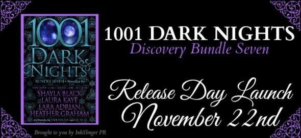 1001-dark-nights-bundle-7-rdl-banner