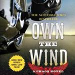 Review: Own the Wind (Chaos #1) by Kristen Ashley