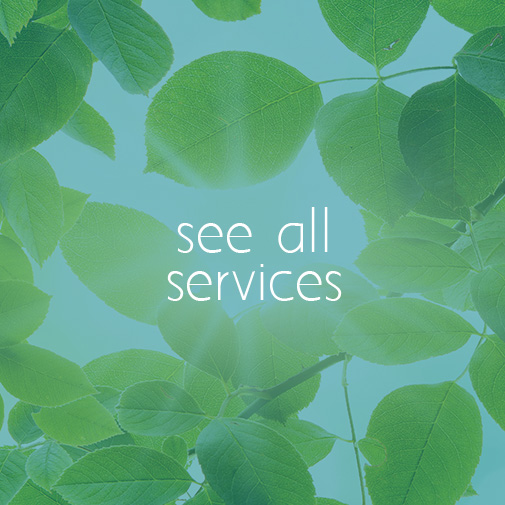 see all services selective focus
