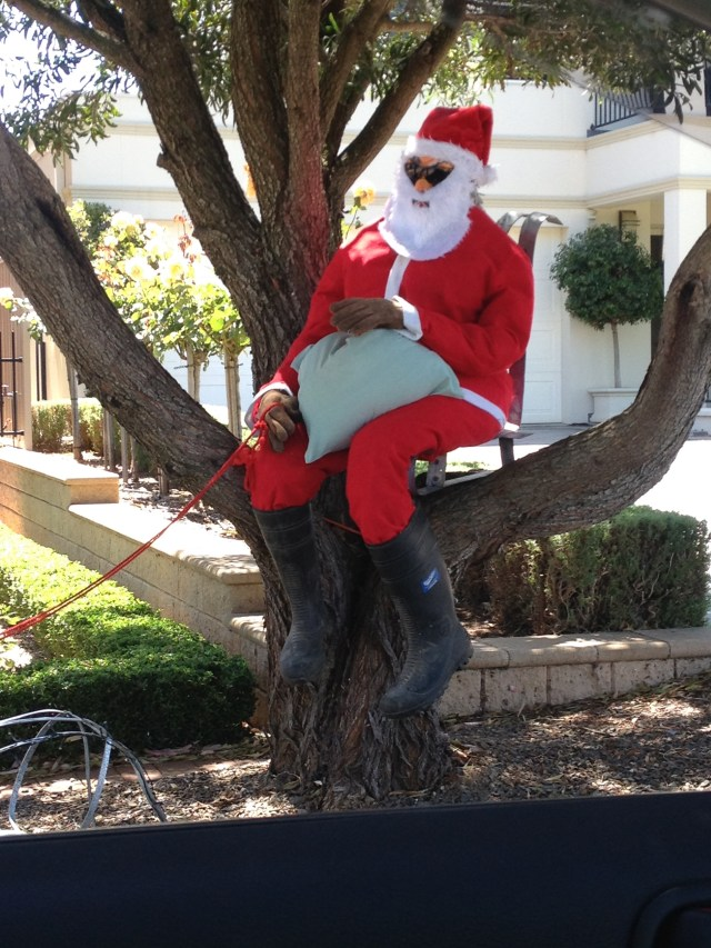 Santa in a tree, Tanunda December 2014