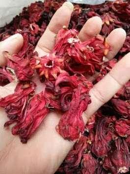 bunga rosela