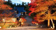 外国人が作った「京都ガイドブック」が面白い!