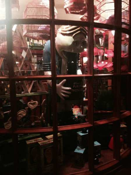 At Weasley's Wizarding Wheezes, you can buy Puking Pastilles and all sorts of fun gags