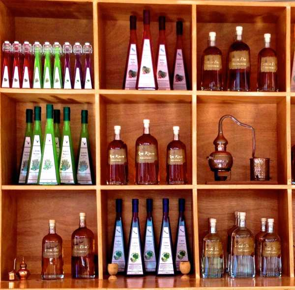 Green not your color? There are several one-of-a-kind creations at the Cadushy Distillery.