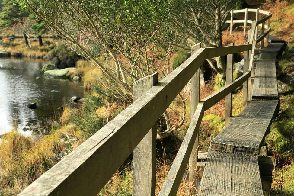 Glenteenassig Ireland Lake Path-