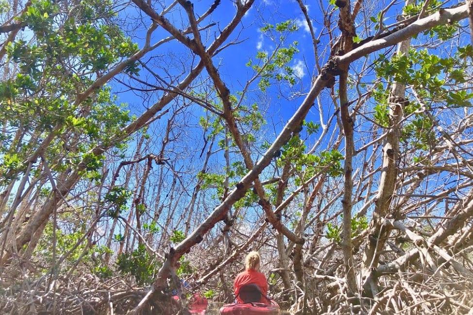 Florida Road Trips - Florida Keys