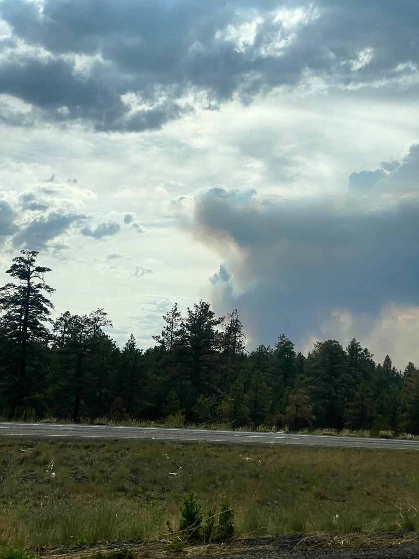 Arizona fires