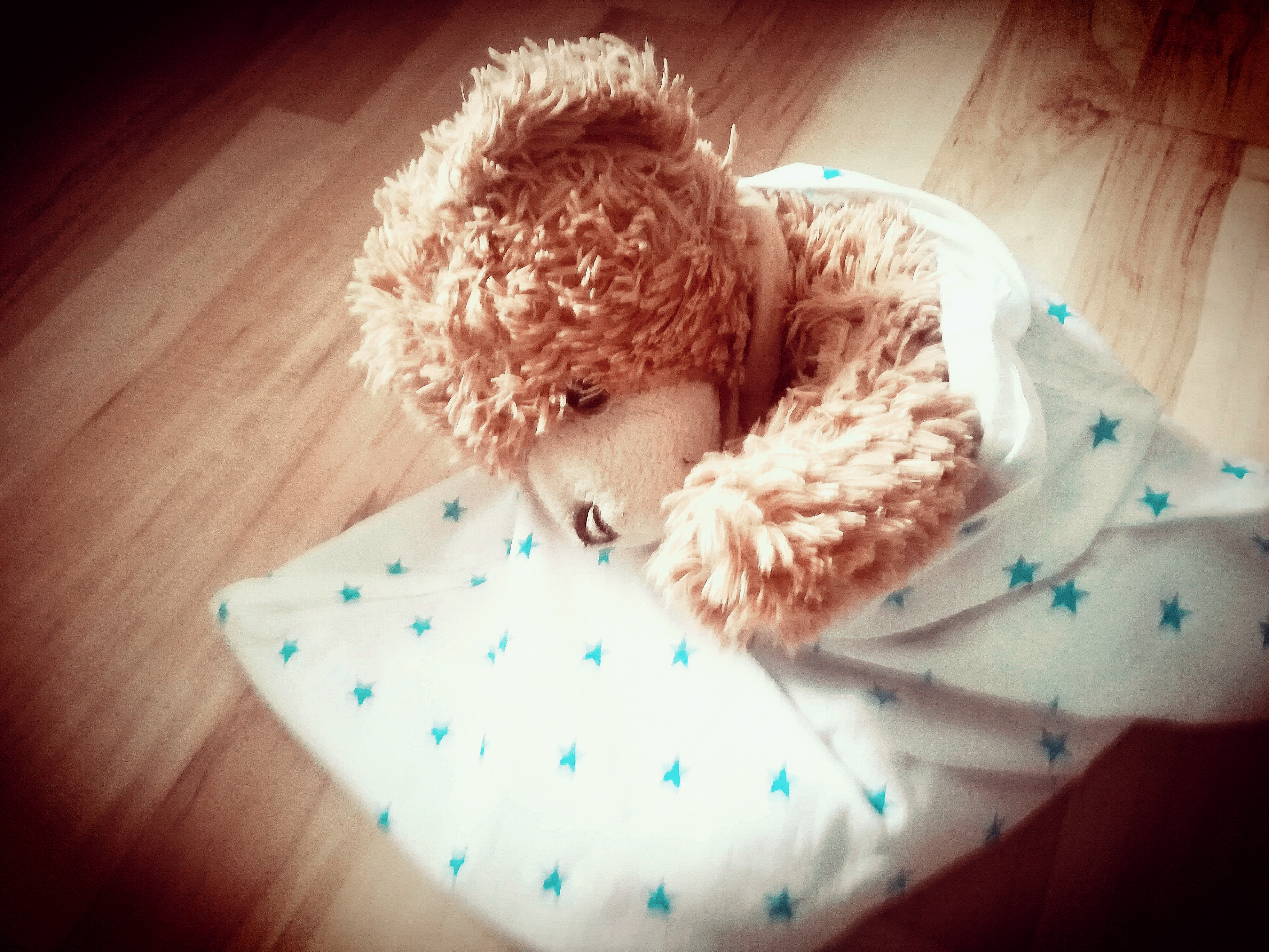 Scenariusz na Dzień Pluszowego Misia Teddy Bear Day