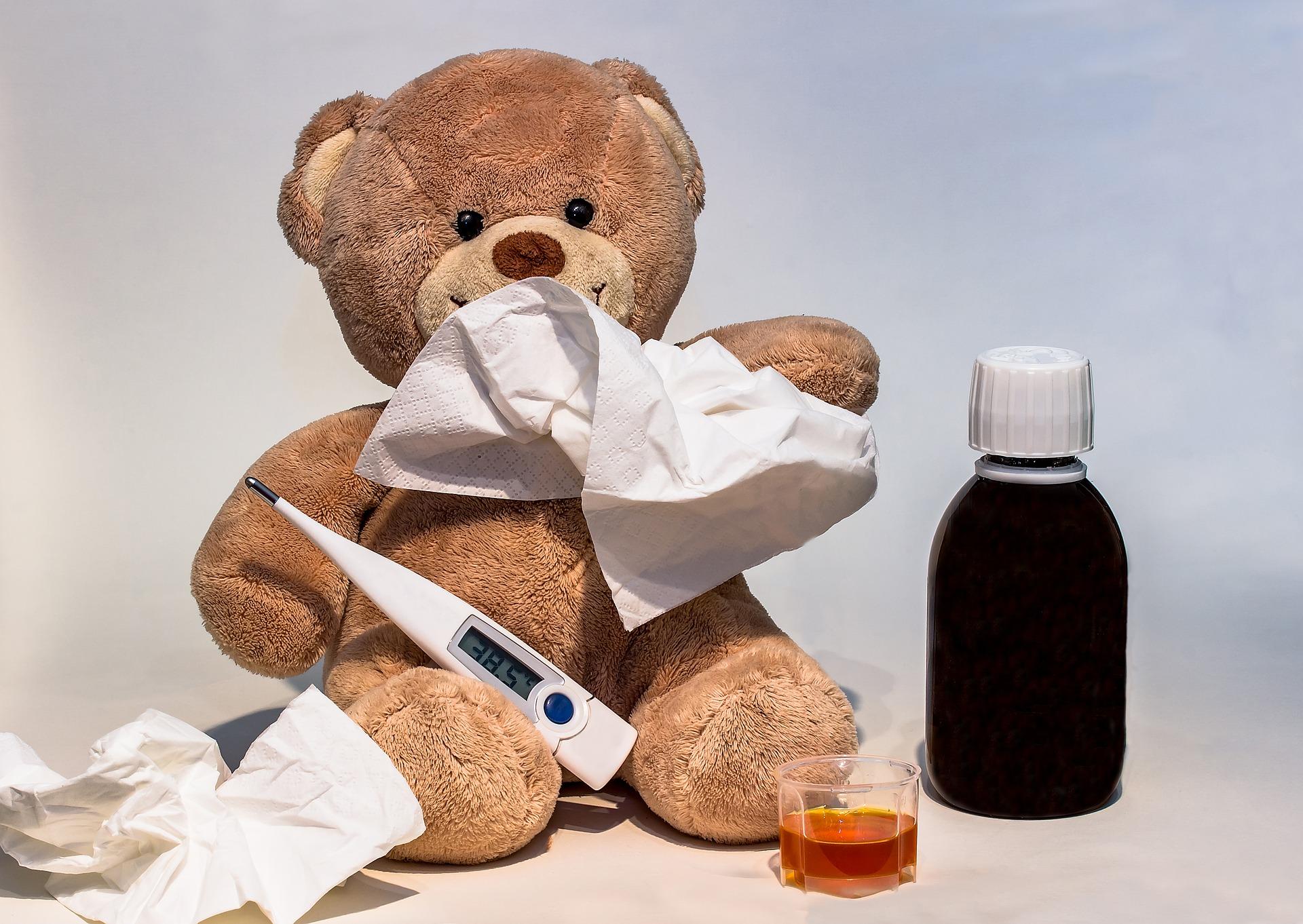 Dzień Pluszowego Misia Teddy Bear Day