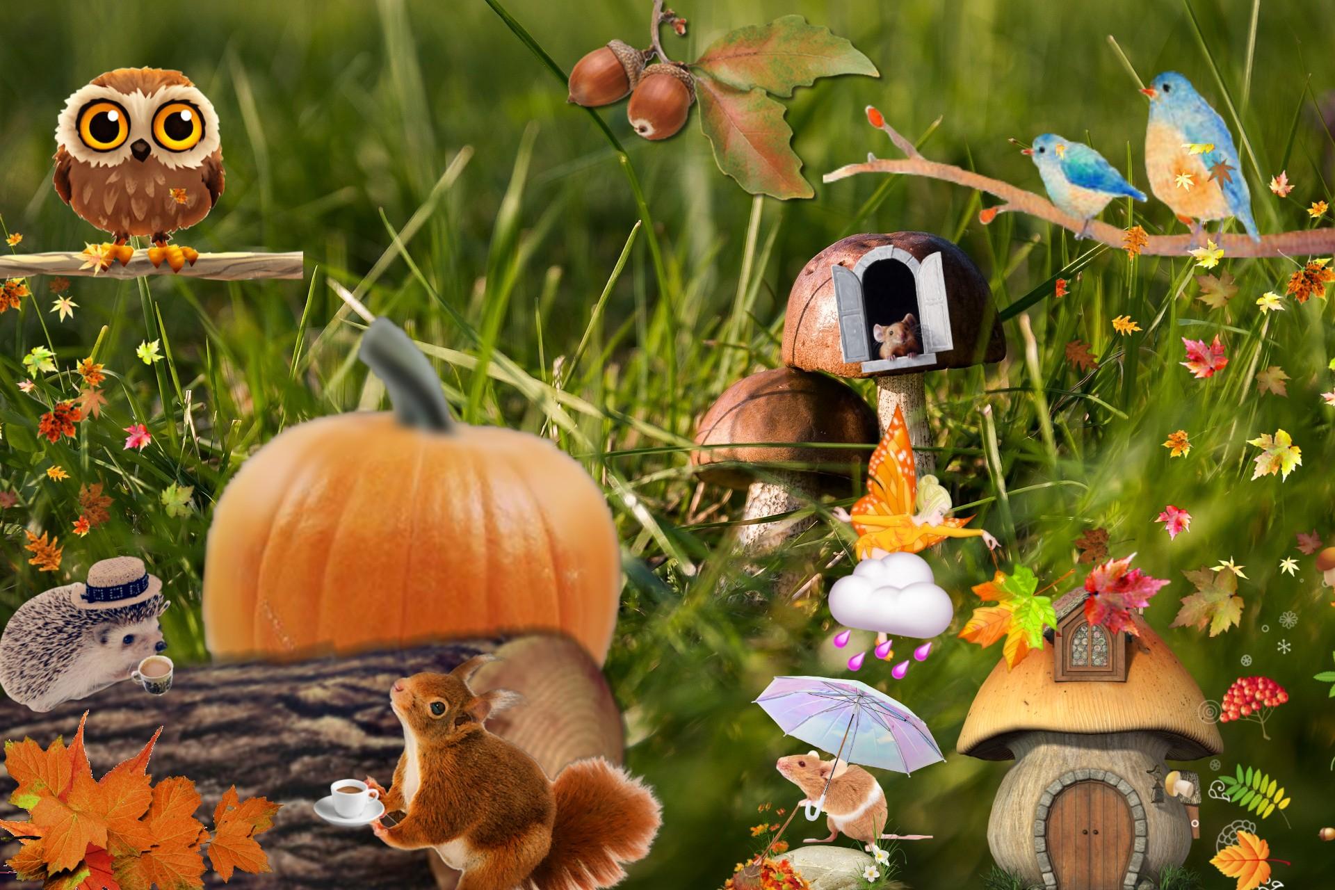Plakat jesienny
