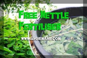 Nettle_fertiliser