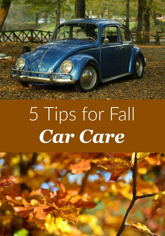 5 Tips For Fall Car Care
