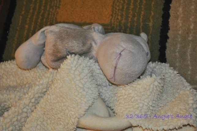 Day 32 - Roxy's Hippo & Blankie - Angie's Angle