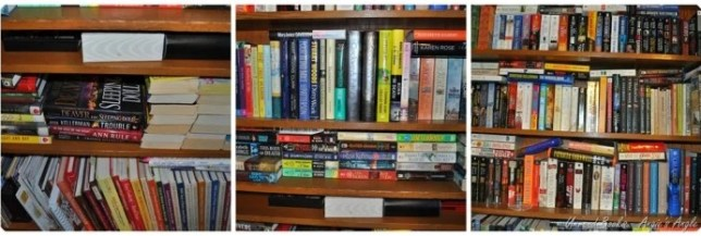 Unread Books - Angie's Angle