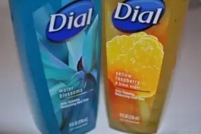 Purex Insider - Dial Deep Cleansing Hand Soap (1)