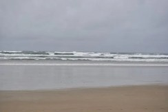 Sunday Beach Trip - Wind and Rain (40)