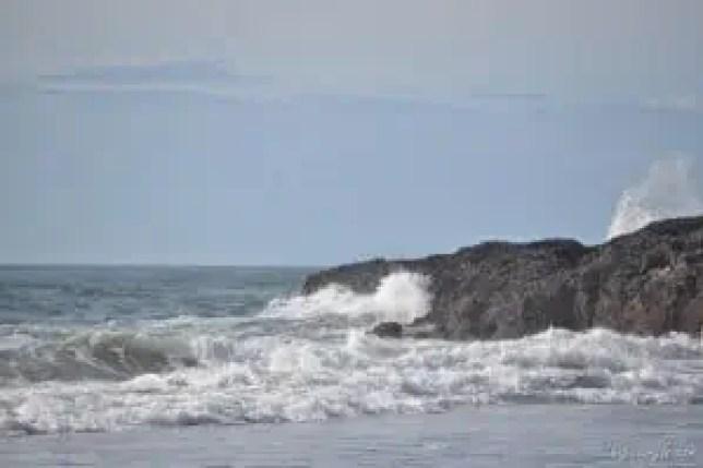 Tuesday Walk & Beach at Devil's Churn (79)