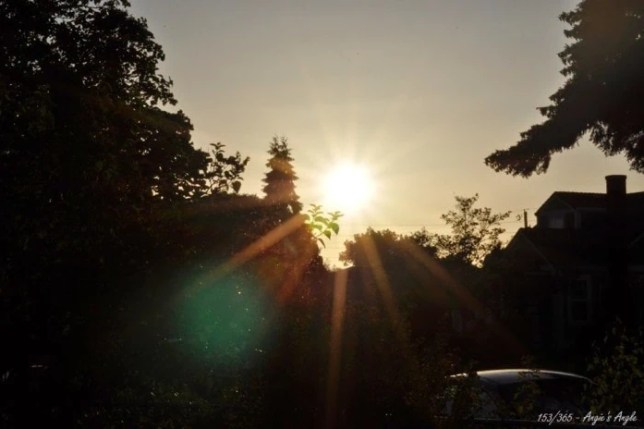 Day 153 - Bright Sun as it Goes Down