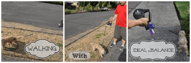 Walking with Ideal Balance