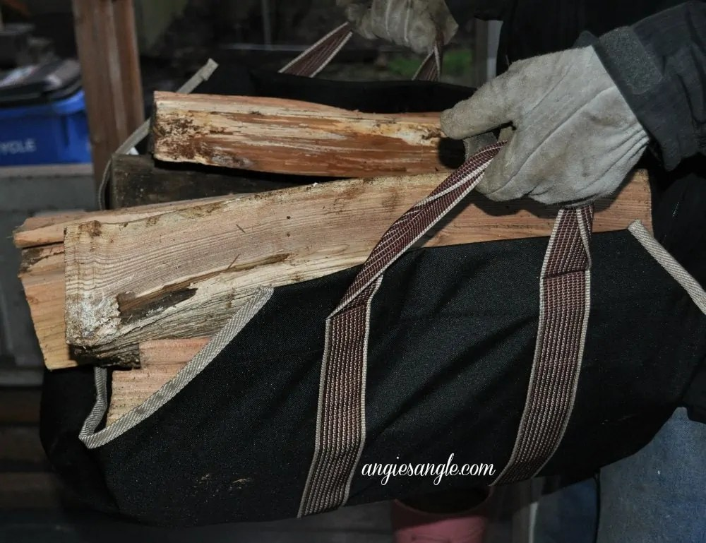 Astor Canvas Log Carrier - In Use