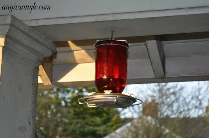 Catch the Moment 365 - Day 187 - Hummingbird Feeder