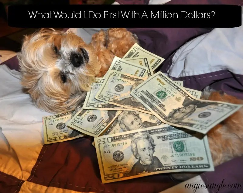 What Would I Do First With A Million Dollars?