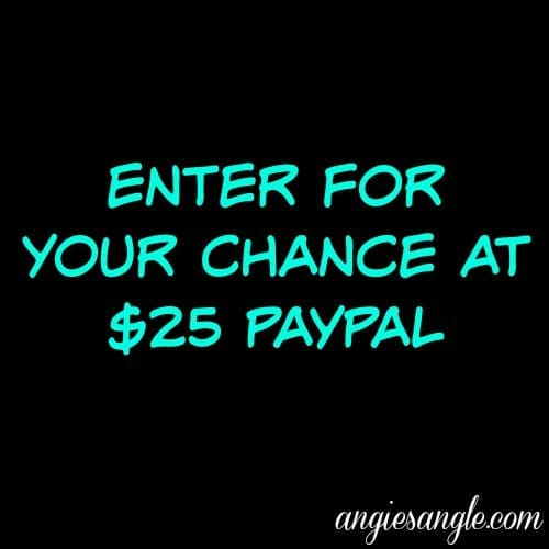 Win PayPal in this Life's a Beach Giveaway Hop ends May 17, 2017