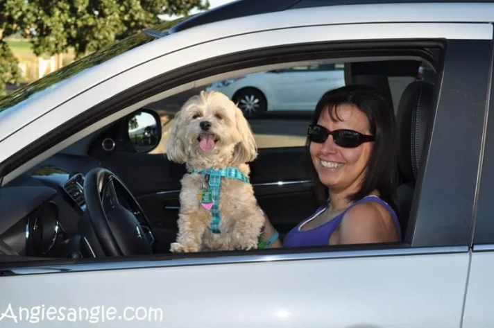 Running Errands With The 2016 Mitsubishi Outlander Sport (52)