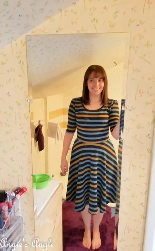 2017 Catch the Moment 365 Week 10 - Day 69 - LuLaRoe Nicole Dress