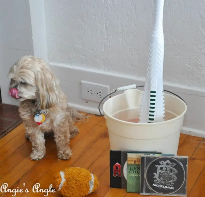 Spring Cleaning with Libman