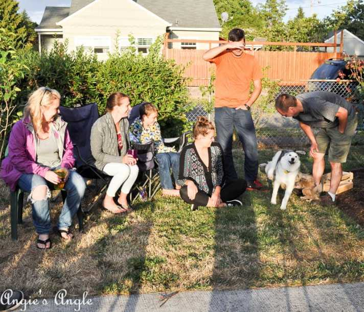 2017 Catch the Moment 365 Week 33 - Day 225 - Dogs Making Laughter