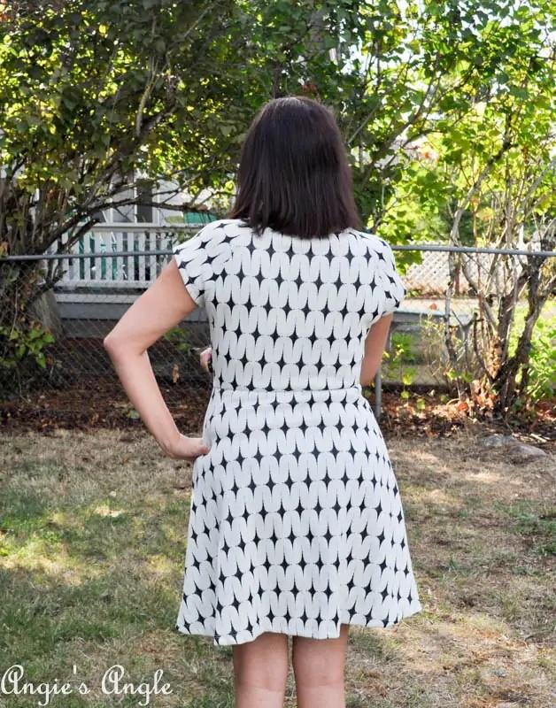 Showcasing Second Stitch Fix - Dress One Back