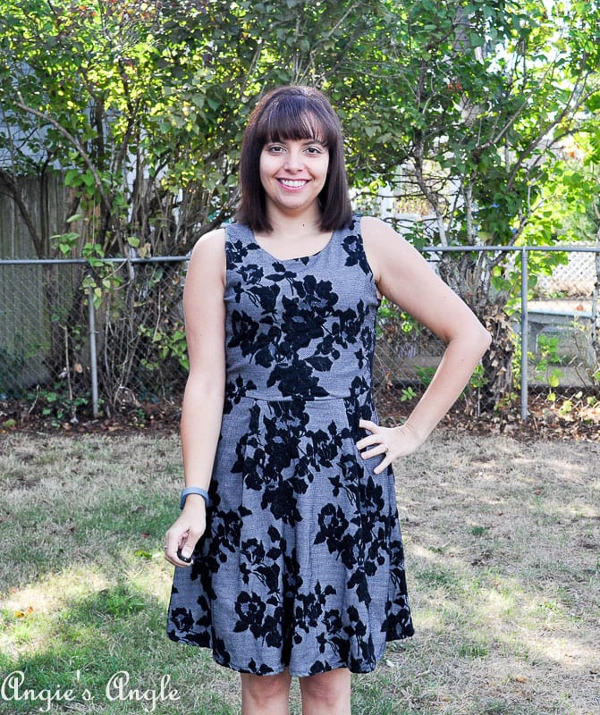 Showcasing my Second Stitch Fix - Front of Dress Two