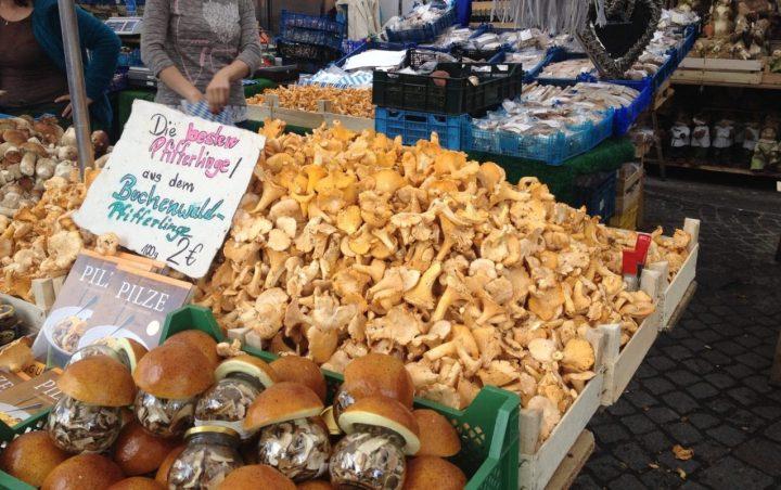 Pfifferlinge, Chanterelle mushrooms