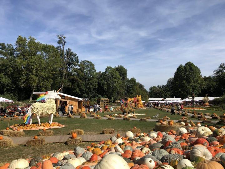 Pumpkin Festival Ludwigsburg near Stuttgart