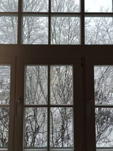 luty, marzec 2106- w bieli (48)