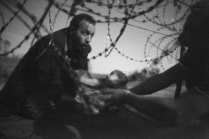 World Press Photo of the Year. Migrants crossing the border from Serbia into Hu