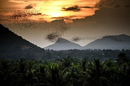 sunset_battambang