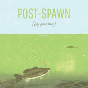 Post Spawn Bass Fishing Tips