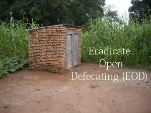 Toilet blog post