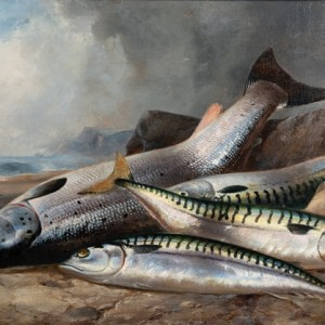 H.L. Rolfe: Still life study of Salmon and Mackerel in rocky shoreline setting,