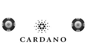 カルダノエイダコインの公開日