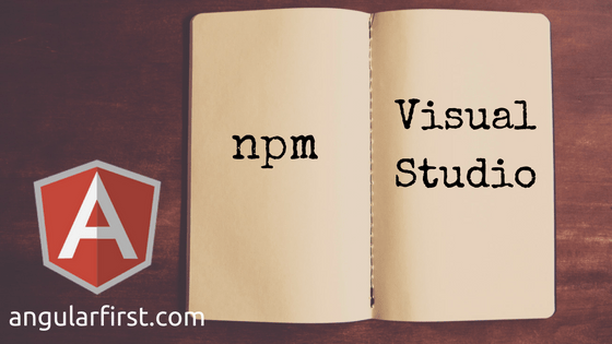Getting Started with npm in Visual Studio | Angular First